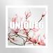 UNIQUE6