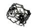GL-0230B 椿と木瓜(つばきとぼけ)