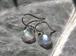 【SV925】レインボームーンストーン ラウンド ピアス *虹色の月石*