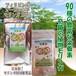 緑汁まるんがい 徳用100g&タブレット セット