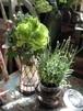 merci maman!Fleur vase deux  お届け先が名古屋市内のお客様は別料金プランがございます