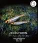 CHIGYORIS -35
