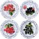 オワゾブルーフルーツ デザートプレート/4種類
