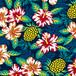 a/f_03_hibiscustopineapple