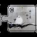 【スマホケース】日々是好日【iPhone11】