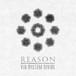 VIO SYSTEM DIVIDE『REASON』CD