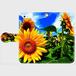ほっかいどうsunflower 手帳型スマホケース iPhone5/5s