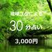 琉球ユタよる30分占い