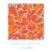 J.COLUMBUS / NORTH TOKYO SOUL TAPE (CD)