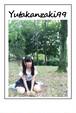 99の試練 Photo album (20P)