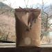 【新米】水上の米(5kg)