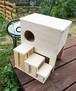 子うさぎ、モルモット等の小動物のお家と階段のセット