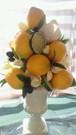 レモンツリー