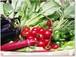 採りたての野菜を厳選して9品セレクト【1回分】