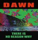 "DAWN ""THERE IS NO REASON WHY / 10inch+DLcode"