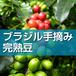 ブラジル一番摘み完熟豆 100g