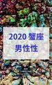 2020 蟹座(6/21-7/21)【男性性エネルギー】