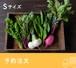 <予約注文>FIO野菜 Sサイズ
