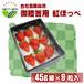 【高糖度イチゴ 糖度15度~ 紅ほっぺ】45g級9粒詰め合わせ【ご贈答用化粧箱入り】