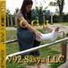 V92  Sasya LLC 52min movie down load