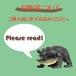 お取引について ◆ご購入前に必ずお読みください◆(カートに入れないでください)