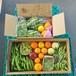 追加!豆祭り★セット!★ソラマメとエンドウ★冷凍可 初夏の柑橘!お豆ご飯、まめ尽くし。