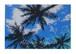Aloha Hawaii ポストカード 絵画:90ディグリーズ(90Degrees)