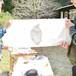 阿蘇小国杉・年輪手ぬぐい作りワークショップ【小国エリアにて体験】