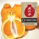 【完売】山虎の中晩柑:3kg