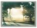 "Yuji Hamada ""photograph"" Type C"