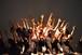 8月15日10:30~11:30MSY協会新サイトOPEN記念 スペシャル企画(3)  峯岸way アーサナの無いヨガのクラス