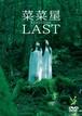 DVD「LAST」菜菜星