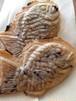 【季節のトッピング無料】天然物‼︎グルテンフリー無農薬玄米粉たい焼き(つぶし餡)