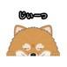 見てまステッカー【ポメラニアン】 犬 ステッカー シール