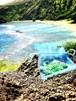 【メモリーオイル】Hawaiiブレンド【限定8個】