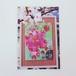 Sakura Girls 2011◎ポストカード
