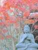 鎌倉長谷寺の紅葉①