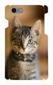 スマホケースiPhone7「子猫」(送料無料)