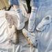 ダッドスニーカー 厚底 韓国ファッション レディース スニーカー ダッドシューズ シューズ 厚底スニーカー カジュアル DTC-607514847414