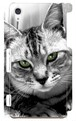 スマホケース Xperia Z2 グリーンアイズ
