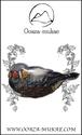 ブローチ - Joli oiseau