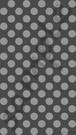 25-z-1 720 x 1280 pixel (jpg)
