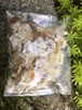 琥珀原石(欠片&琥珀粉)入浴用