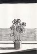 太久磨「自画像としての植物 ペン画5」