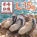 【米崎牡蠣】生食用殻付き牡蠣  Lサイズ(15個)