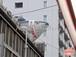 築地場外市場のまぐろさん~Tsukiji market of cute tuna~