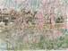 「水彩画ミニアート」鴨川の桜