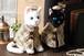 Noble cat/ノーブルキャット ポンチョ&帽子の衣装付き 黒猫 白猫 ねこのもり