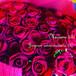 バラ花束60本 2種類から色が選べます