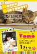 ペットの猫向け誕生日ポスター_12 A4サイズ